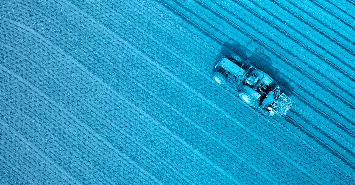 Agronegócio movimenta a economia